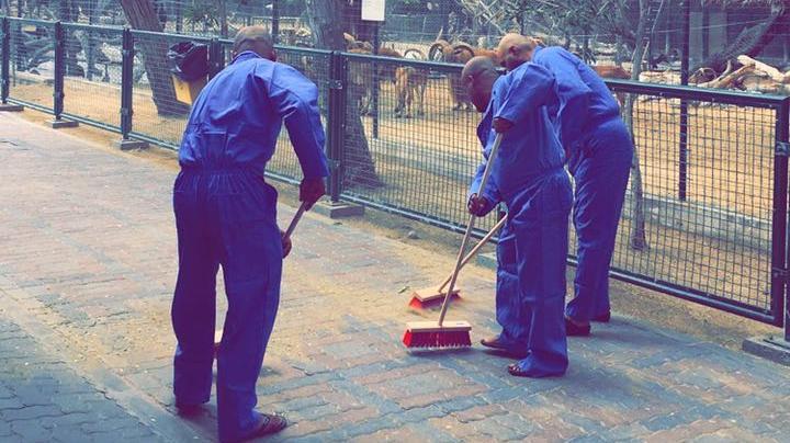 Η Αναστολή του Θεσμού Παροχής Κοινωφελούς Εργασίας